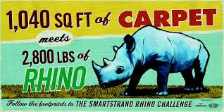 RhinoChallenge1